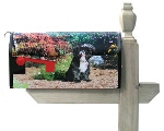 Custom Photo Mailbox Cover